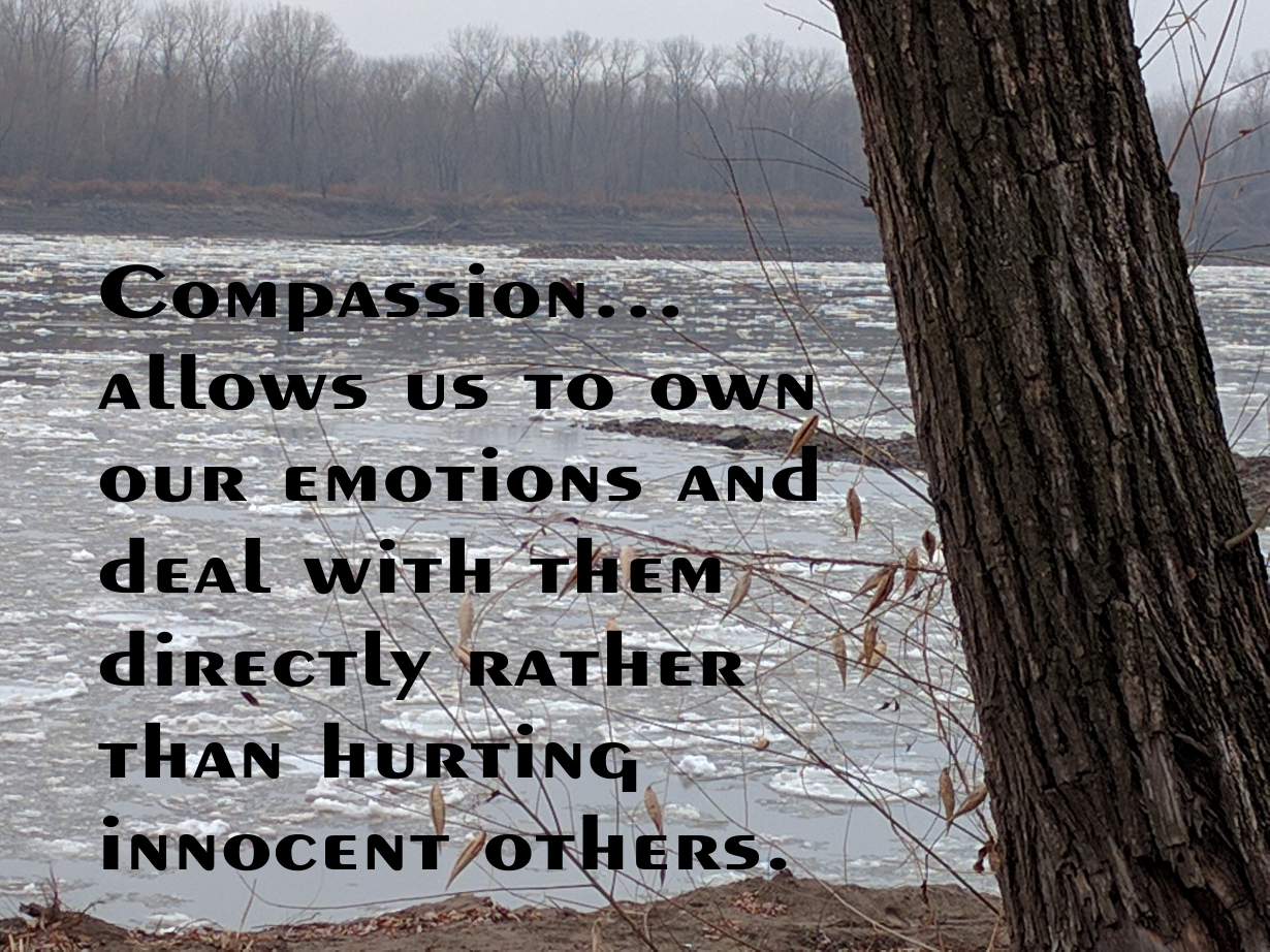Compassion...allows us to own our emotions and deal with them directly rather than hurting innocent others.