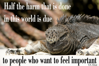 Half the harm that is done in this world is due to people who want to feel important. T.S. Eliot