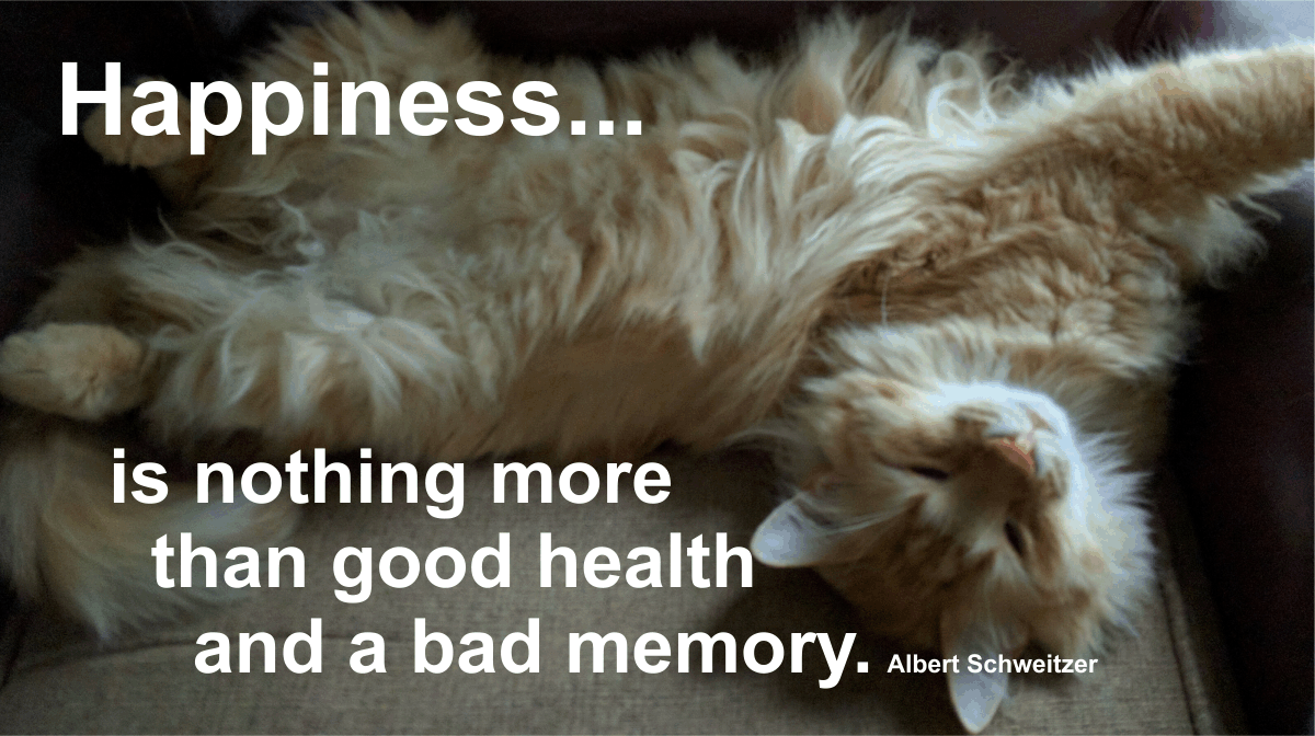 Happiness is nothing more than good health and a bad memory. Albert Schweitzer