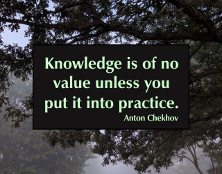 Knowledge is of no value unless you put it into practice. Anton Chekhov