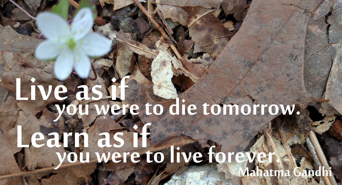 Live as if you were to die tomorrow. Learn as if you were to live forever. Mahatma Ghandi