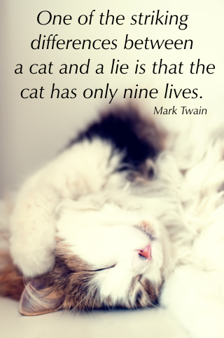 One of the most striking differences between a cat and a lie is that a cat has only nine lives. Mark Twain