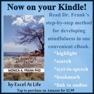 The Mindful Attitude now available on Kindle!