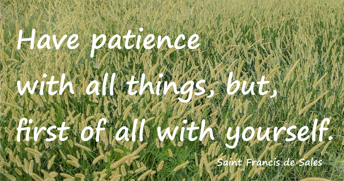Have patience with all things, but, first of all with yourself. St. Francis de Sales