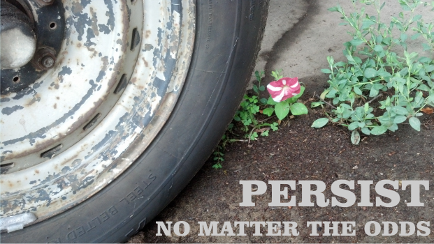 Persist. No Matter the Odds.