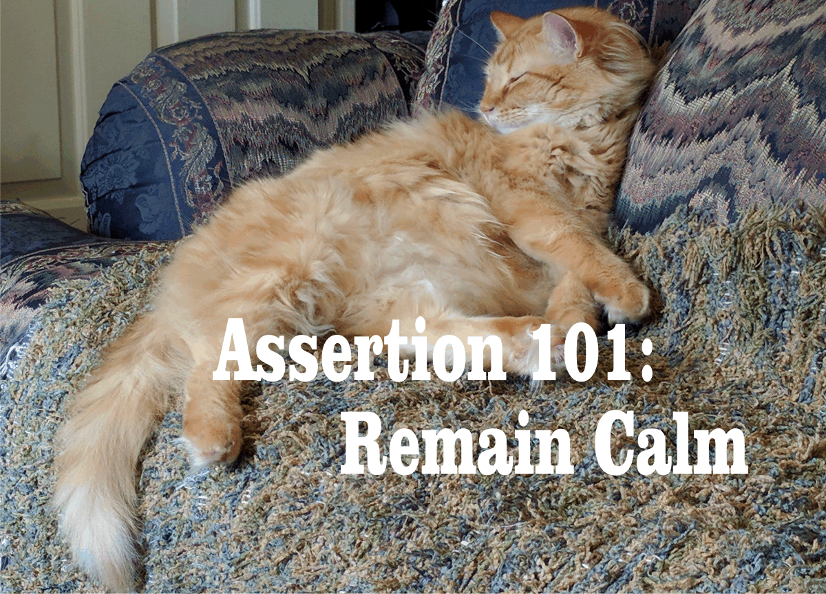 Assertion 101: Remain Calm