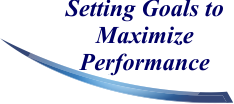 Setting Goals to Maximize Performance